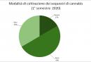 modalita_di_coltivazione_dei_sequestri_di_cannabis_1deg_semestre_2020.png