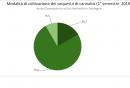 modalita_di_coltivazione_dei_sequestri_di_cannabis_1deg_semestre_2019.