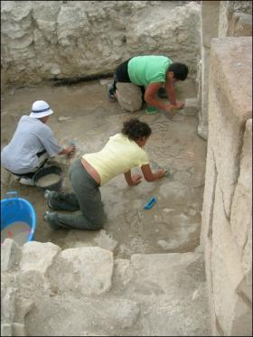 Pulizia del mosaico del frigidarium